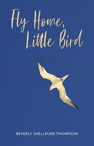 Fly Home, Little Bird cover
