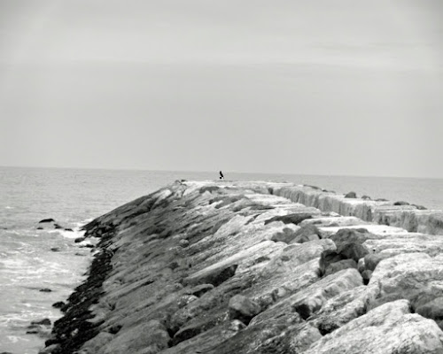 Mare d'inverno di freeblukite