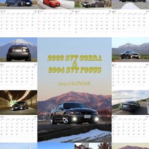 マスタングSVTコブラ  2003のカスタム事例画像 u1cobraさんの2018年11月12日05:50の投稿