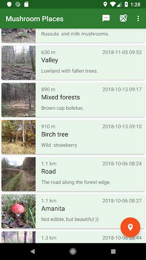 Forest Navigator Lite ss3
