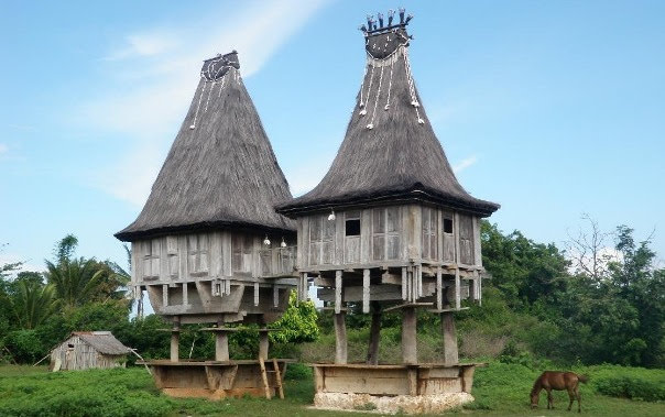 Dong_Son_style_houses_Tutuala