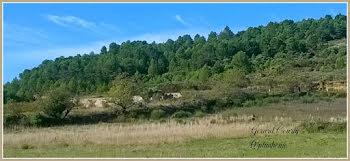 terrain à Félines-Minervois (34)