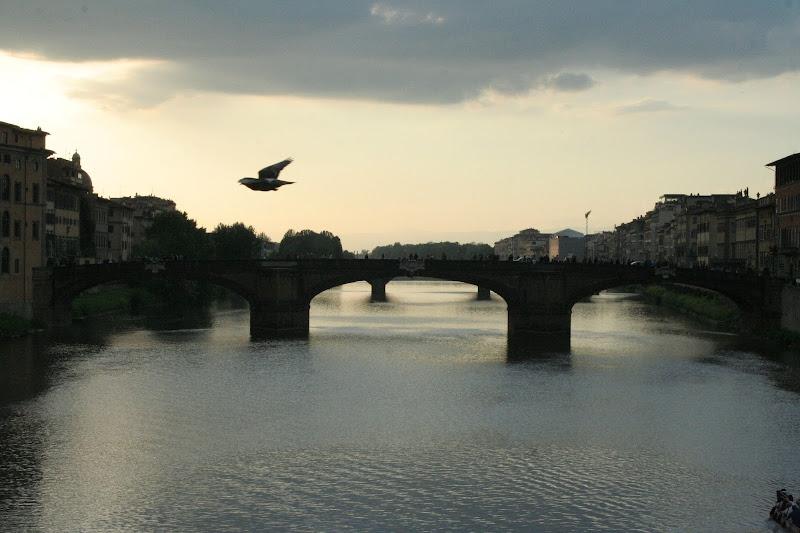 La vista dal ponte vecchio di elebif