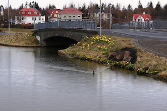 Photo: Bridge over Tjörnin