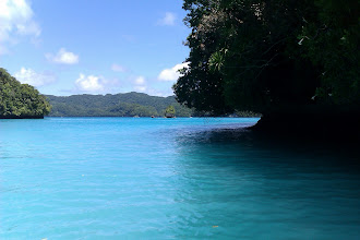Photo: 帛琉的海太美