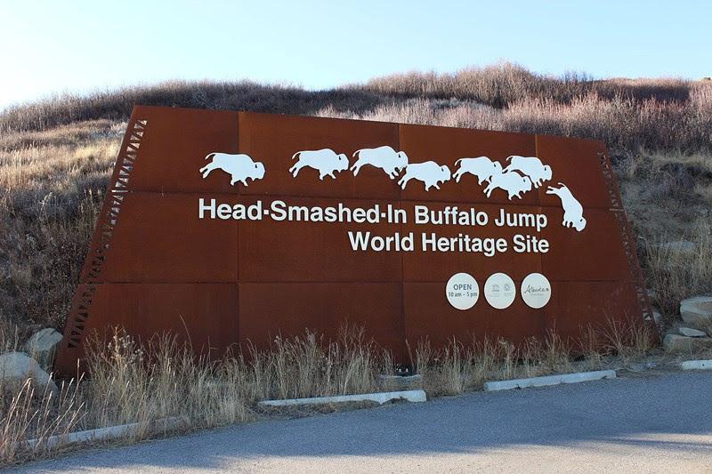 A técnica do salto do búfalo usados pelos nativos americanos