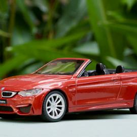 BMW M4 Cabrio by Richard Idea - Artistic Objects Still Life ( close up, toys, shell, still life, bmw )