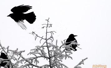 Photo: Abflug