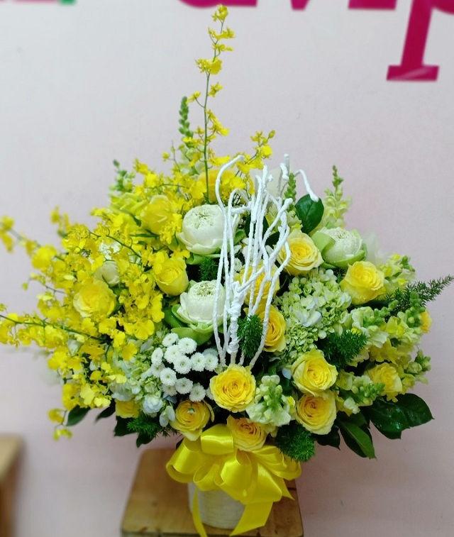 Qzy3Cq6O6aOBRl89w Ui3oTSQb wgpBRlGgQA7xaRFiZ9H3YgrQRpptZnqIyOn8qhVsXRpxGOcwN6vVHghlQ87YlxArLo8bbQbVvTxODjsp3bh3EOw3msYxEkdxqA0FBQm8lVlD7sIJC54rssg - Shop hoa tươi Phú Nhuận tại MrHoa có giao hoa tận nhà