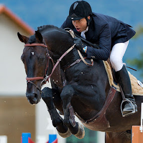 Show jumping by Bostjan Pulko - Sports & Fitness Other Sports