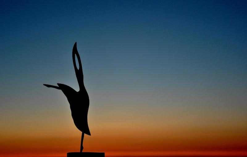 La ballerina di Viola1