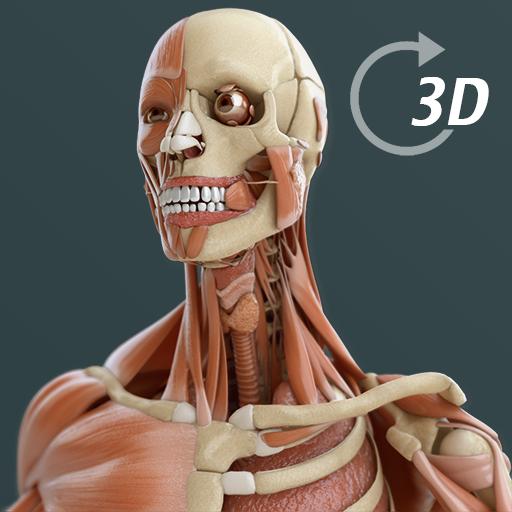 Visual Anatomy 3D | Human 醫療 App LOGO-硬是要APP