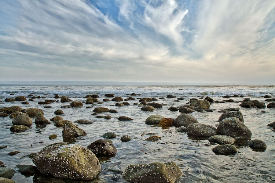 Stones and Bones by Johannes Bichmann - Landscapes Waterscapes