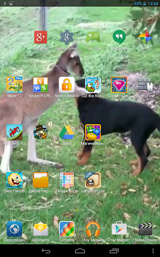 Animal Friends Live Wallpaper
