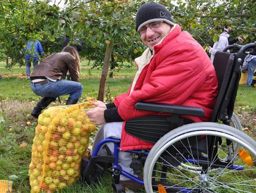 Ramassage pommes L'Arche à Beauvais