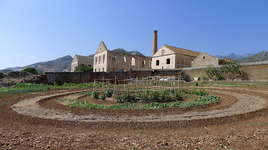 Photo: Remarkable vegetable garden on factory supplied land irrigation