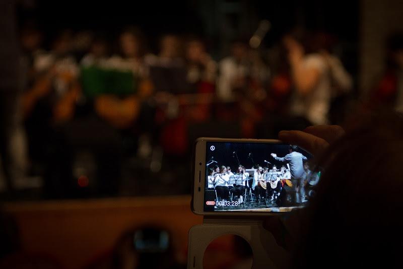 Al concerto di alepava
