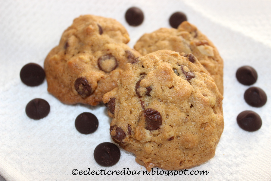 chocolate chip cookies with pecans.JPG