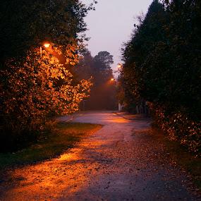 Cold morning by Juliusz Wilczynski - City,  Street & Park  Street Scenes