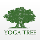 Yoga Tree SF icon
