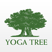 Yoga Tree SF