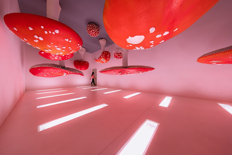 Mush-room di Marco Tagliarino
