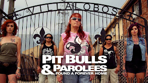 Pit Bulls & Parolees : Found A Forever Home thumbnail