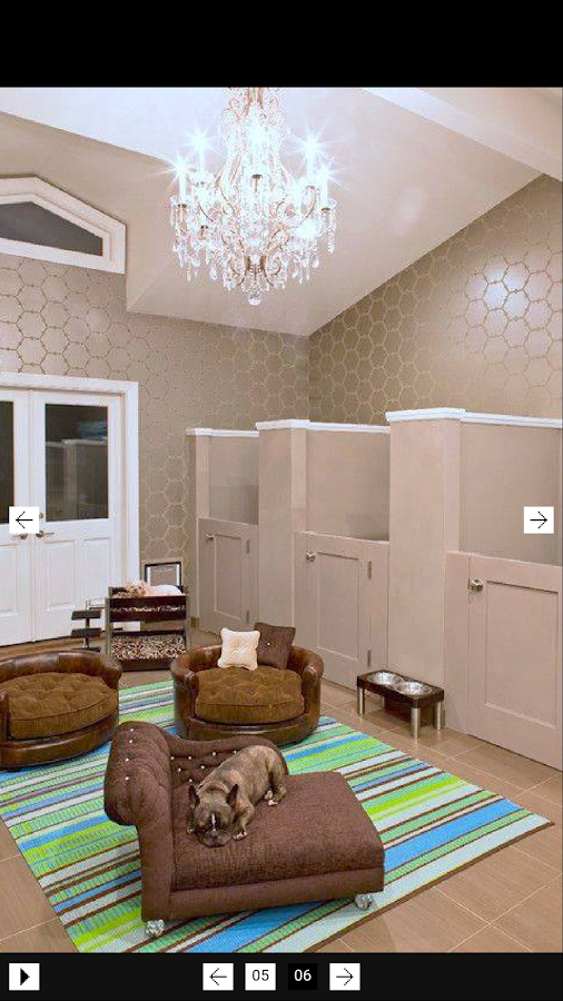 Dog room design android apps on google play for Good room design apps