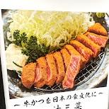 wagyu beef in Tokyo, Tokyo, Japan
