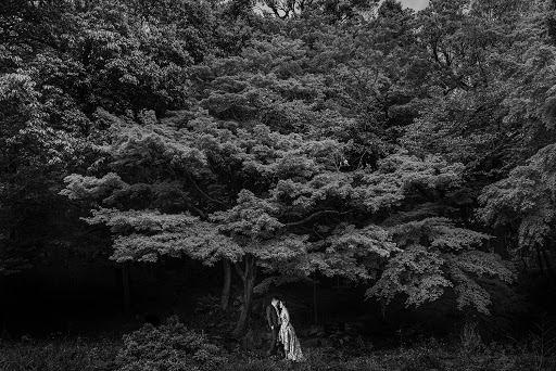 Wedding photographer Tito Rikardo (titorikardo). Photo of 02.05.2016