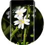 Flowers grass life theme wallpaper & icon pack APK icon