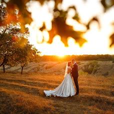 Wedding photographer Artem Dolzhenko (artdlzhnko). Photo of 11.09.2016