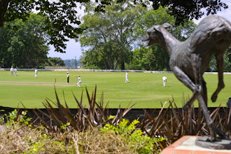 Photo: AH Smith Oval from Founders Avenue