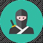 Ninja Story  icon