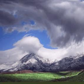 Mount Alborz,Iran by Fereshteh Molavi - Landscapes Mountains & Hills ( clouds, mounts, grass, cottage, snow )
