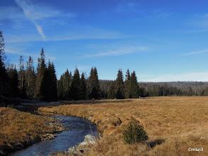 Photo: Roklanský potok pod Javoří pilou