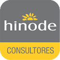 Hinode Encontre Consultores