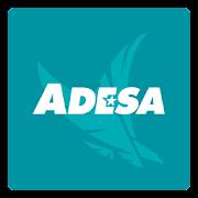 ADESA Marketplace: Source wholesale used vehicles