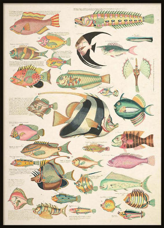 Vintage Collage, Poster