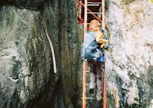 Photo: Barni a zsákban
