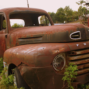 Ford Truck by Pat Brink - Transportation Automobiles ( immobile, pickup, rusty, junk yard, ford )