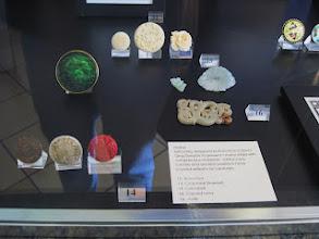 "Photo: China - ivory (top row_ Jade in the middle Cinnabar, Ivory, Modern ""cinnabar"" bottom row"