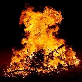 Stout by Savannah Eubanks - Abstract Fire & Fireworks ( orange, blaze, night, fire, flame, desert, bonfire,  )