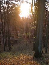 Photo: Autumn Sunset