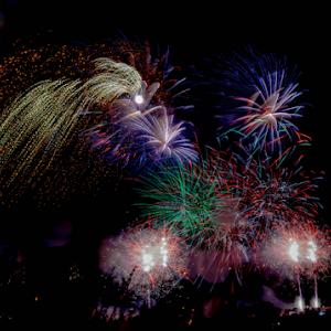 8365 jpg Firework Aug -18-1.jpg