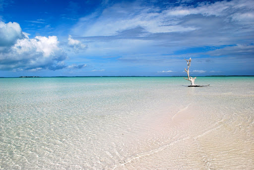 Head to Harbour Island in the Bahamas for long stretches of pristine beaches and turquoise waters.