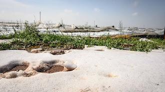 Invernaderos afectados por el granizo en Níjar.