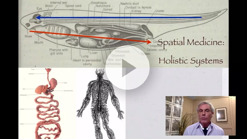 Tom Myers Fascia Anatomy