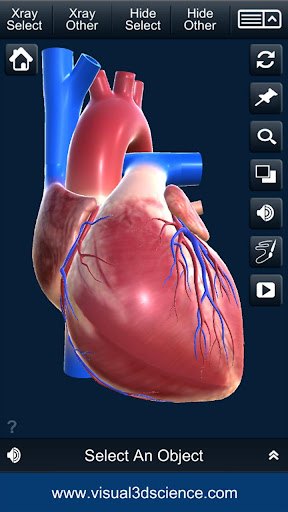 Download My Heart Anatomy 1.4 2