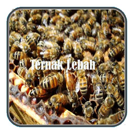 Ternak Lebah